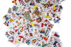 Panini_FrauenWM2015_Collage2